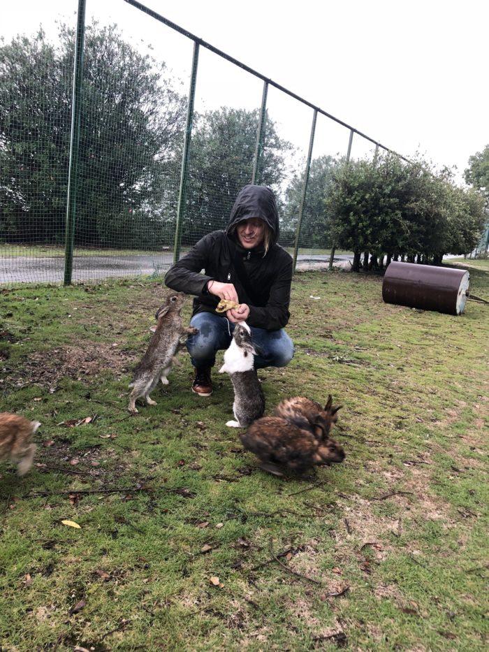 Jag matar en grupp kaniner